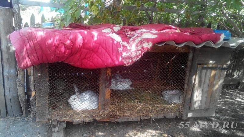 В Омской области задержан любитель крольчатины