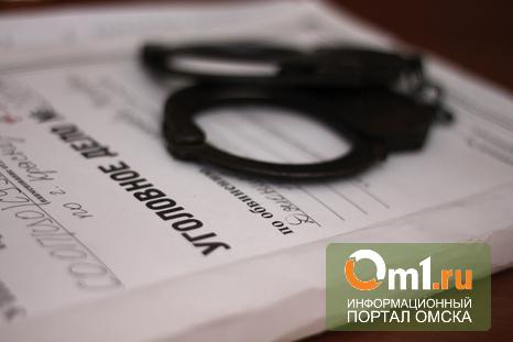 Омичка без родительских прав получила маткапитал, чтобы погасить ипотеку