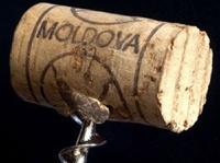 Молдавия обвиняет Россию в обвале цен на виноград