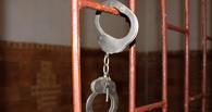 В Омске педофила приговорили к 7,5 годам лишения свободы за 22 связи с девочками