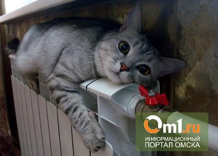 В Омской области подготовка к зимнему сезону опережает график
