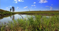 В Омской области прорвало дамбу на реке