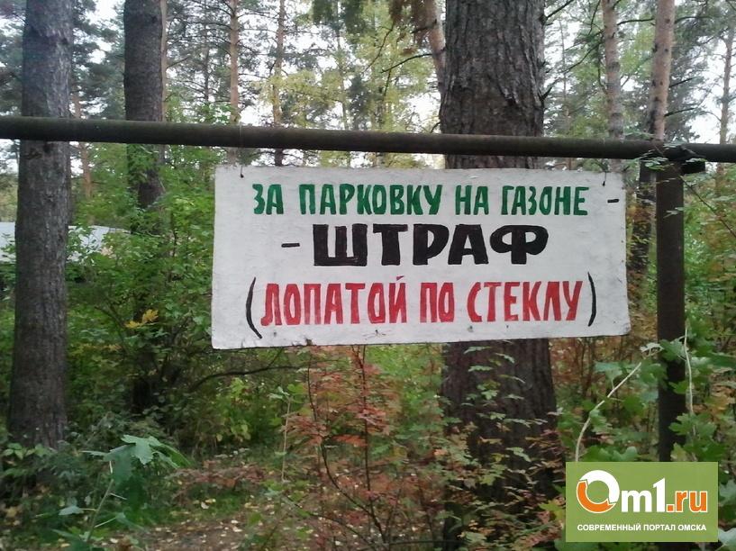 В Омске 420 парковавшихся на газонах нарушителей зафиксировали камеры