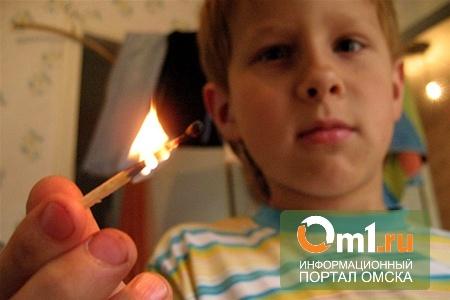 В Омской области дети подожгли дом