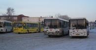 Омичи могут официально пожаловаться на автобусы в соцсетях