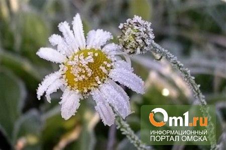 Пляжный сезон в Омске откладывается: лето начнется с туч и заморозок