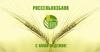 Россельхозбанк возобновил выдачу автокредитов с государственной поддержкой