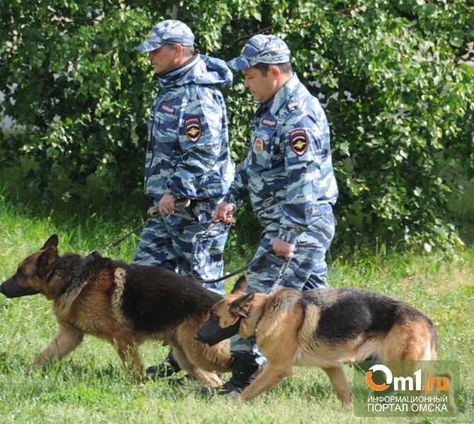 Пропавшего в Омской области Колю Кукина до сих пор не нашли