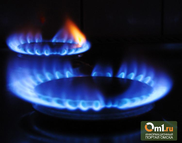 В Омской области с 15 апреля должникам отключат газ