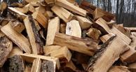 В Омской области дембель убил пенсионера из-за дров