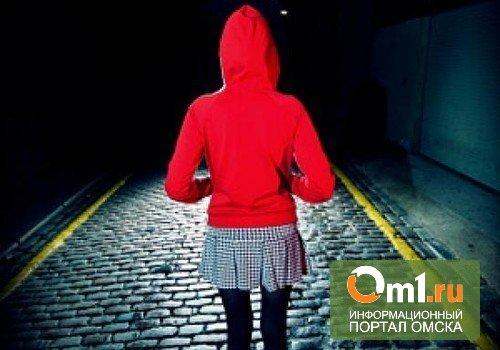 Омская полиция разыскивает еще одну пропавшую девочку