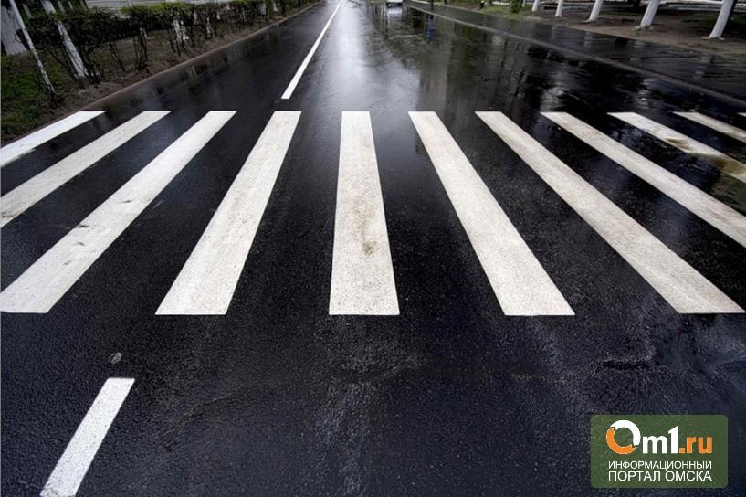 В Омской области на Русско-Полянском тракте насмерть сбили пешехода