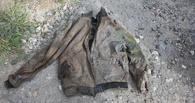 В Омской области у озера нашли скелет парня, убитого в прошлом году