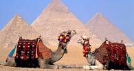 Свыше 60 омичей не смогли получить деньги за путевки в Египет