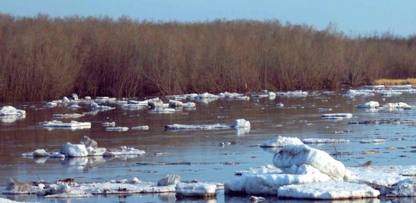 Ледоход в Омске продлится до 13 апреля