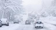 К концу недели в Омске обещают снег и метель