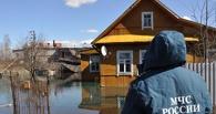 На компенсации пострадавшим от паводка омичам выделят 300 млн рублей