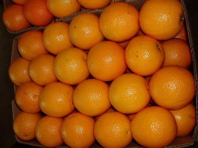 В Омске не пустили грейпфруты, яблоки и виноград