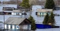 В Омской области прошел пик паводка