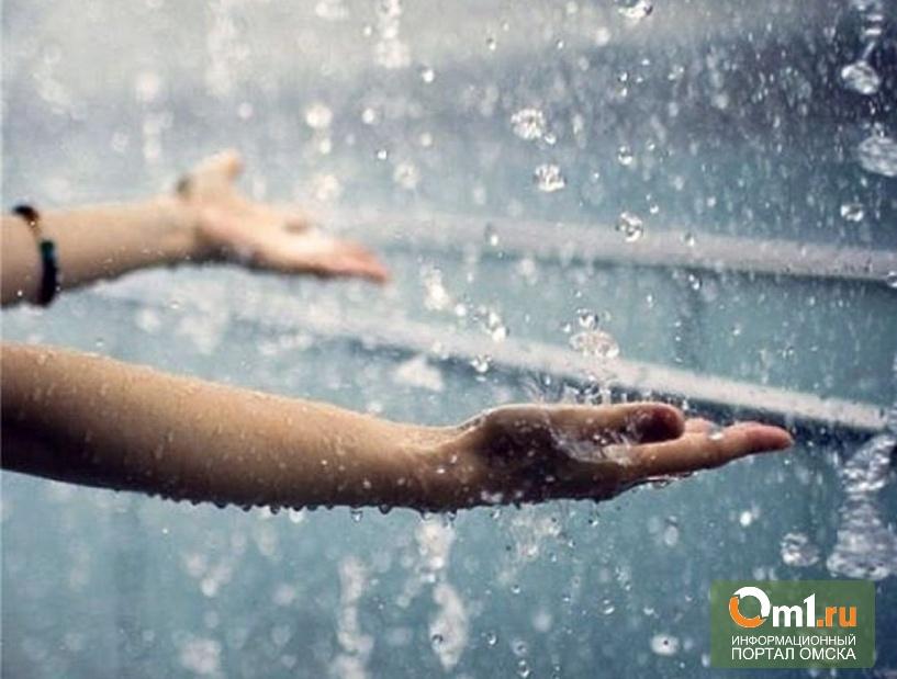 На выходных в Омске обещают дождь и град