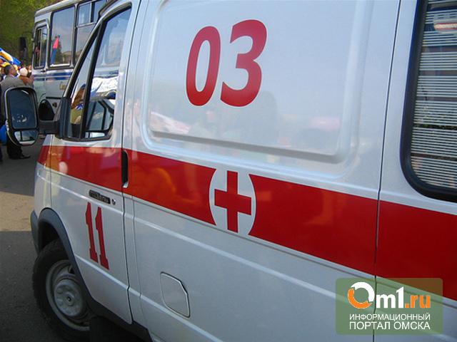 На трассе под Омском автомобиль врезался в грузовик