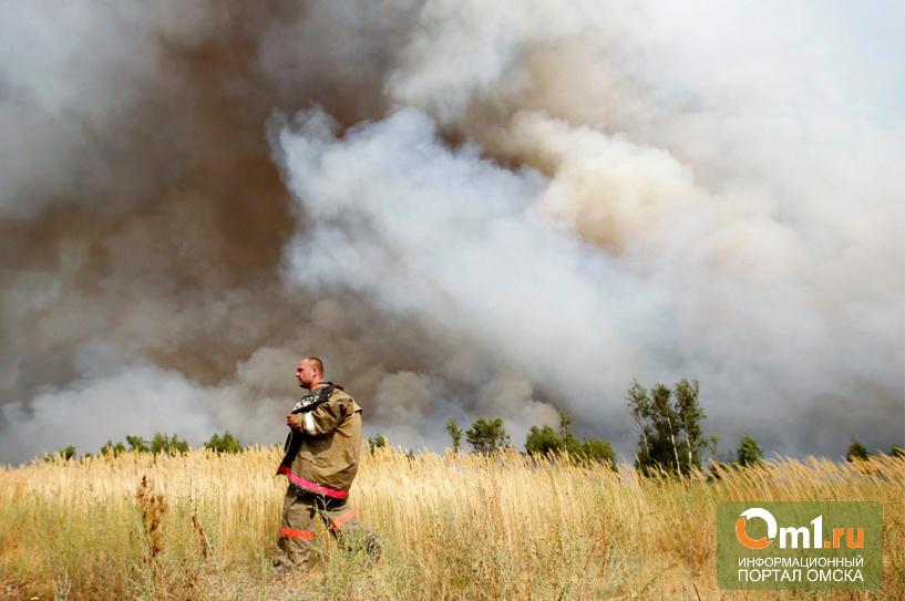 В Омской области за майские праздники произошло 98 лесных пожаров