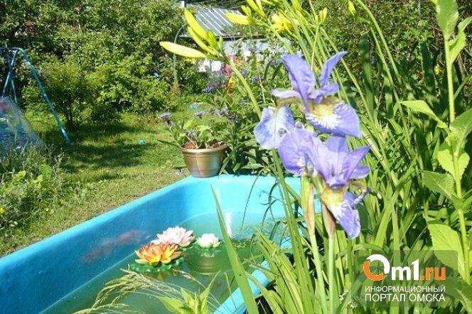В Омской области полуторагодовалый мальчик утонул в ванне
