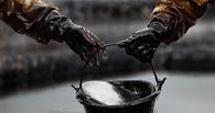 «20 долларов за баррель не выдержит никто»: Минэнерго ждет от правительства «сложных решений»