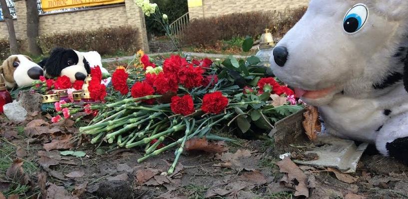 Следователи считают, что у няни-убийцы из Москвы были подстрекатели