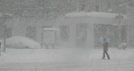 Чем запомнилась омичам прошедшая неделя: снежная буря и дорожная фея