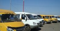 Омские маршрутчики ездят по городу без прав и пьяными