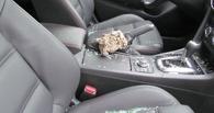 В Омске студент разбивал окна машин и воровал видеорегистраторы