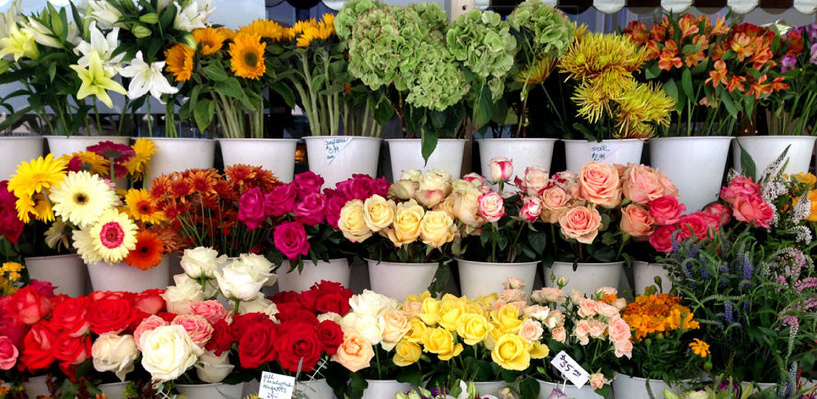 В Омске проверили пришедшие к 8 Марта цветы на предмет заражения