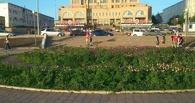 В мэрии Омска объяснили, что будут делать с нежданным «урожаем» конопли