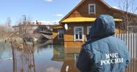 В Омской области талые воды подтопили дома в Ребровке и подворья в Бердовке
