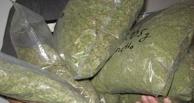 В Омске перекрыли международный наркоканал