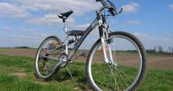 Убийство в Саргатском районе: преступник расстрелял жертву из-за велосипеда