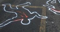 На улицах Омска появились «зебры» из людей