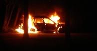 В Омской области на озере в машине сгорел мужчина