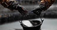 В 2016 году спекулянты обрушат цены на нефть до 15 долларов за баррель