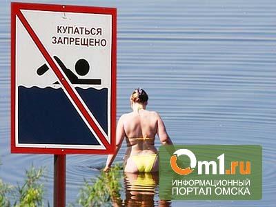 В Омской области из воды достали еще двоих утонувших