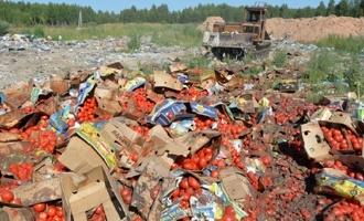 В Омском регионе с начала года было уничтожено 32 тонны опасных продуктов