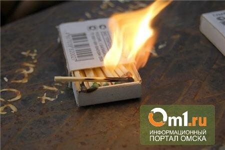 В Омской области пятилетний мальчик чуть не сжег собственную бабушку