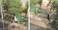 В Омске бабушка угнала тележку с гипермаркета «Лента»