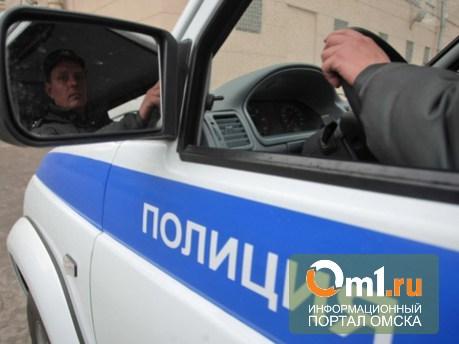 Омичка воровала запчасти от автомобилей полиции