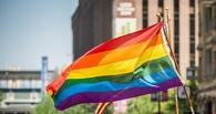 В соцсетях запретили омскую группу с пропагандой гомосексуализма среди детей