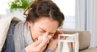 С приходом потепления в Омске ждут вспышки заболеваемости свиным гриппом