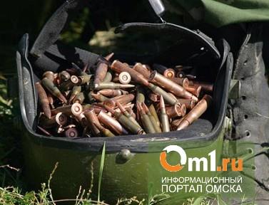 На торговавшего патронами жителя Омской области завели дело