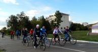 «Позорище»: омичи в шоке от новой велодорожки