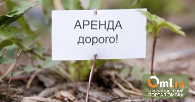 Мэрия подала в суд на семь компаний, задолжавших в сумме 5 бюджетов Омска